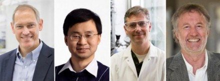 WEI's highly cited researchers