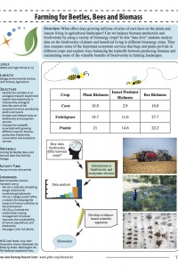 Data Dive: Farming for Beetles, Bees and Biomass | Wisconsin